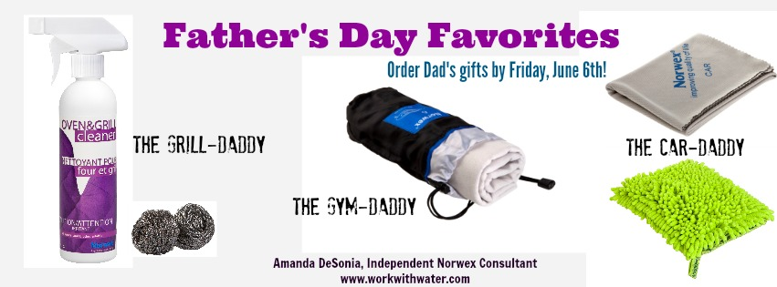 Norwex Father's Day Gifts