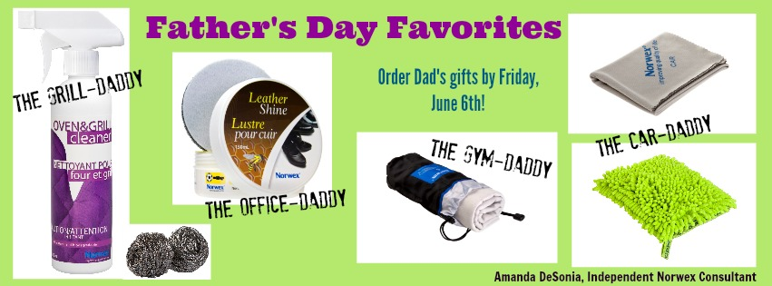 norwex-gifts-for-fathers-day.jpg