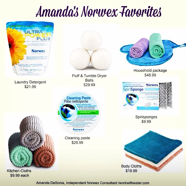 My Favorite and Best Selling Norwex Products