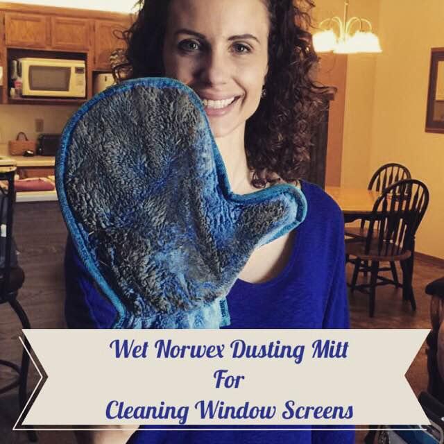 wet_dusting_mitt