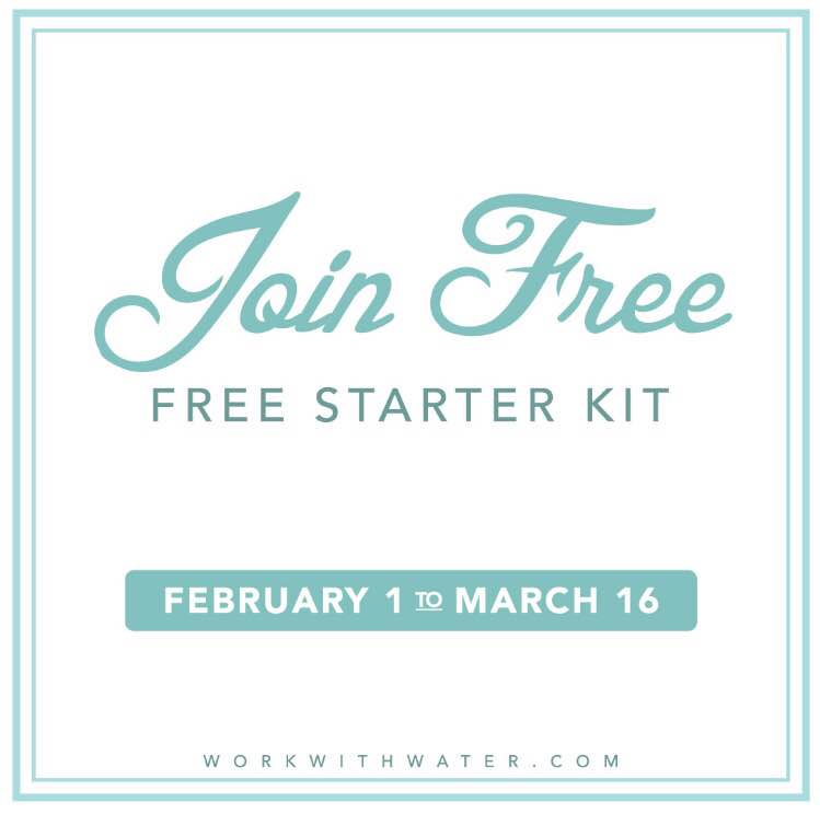 How to Become a Norwex Consultant